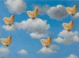 """Spettacolo teatrale - """"Le Nuvole"""" di Aristofane"""